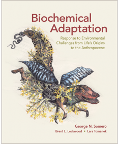 Biochemical Adaptation: Response to Environmental Challenges from Life's Origins to the Anthropocene