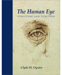 The Human Eye: Structure and Function