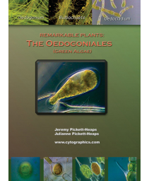 Remarkable Plants: The Oedogoniales (Green Algae)