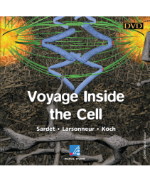 Voyage Inside the Cell